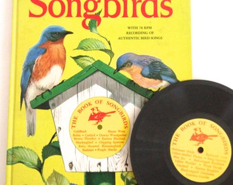 Vintage Songbird Book Record Set Illustrated Bird Guide 1956