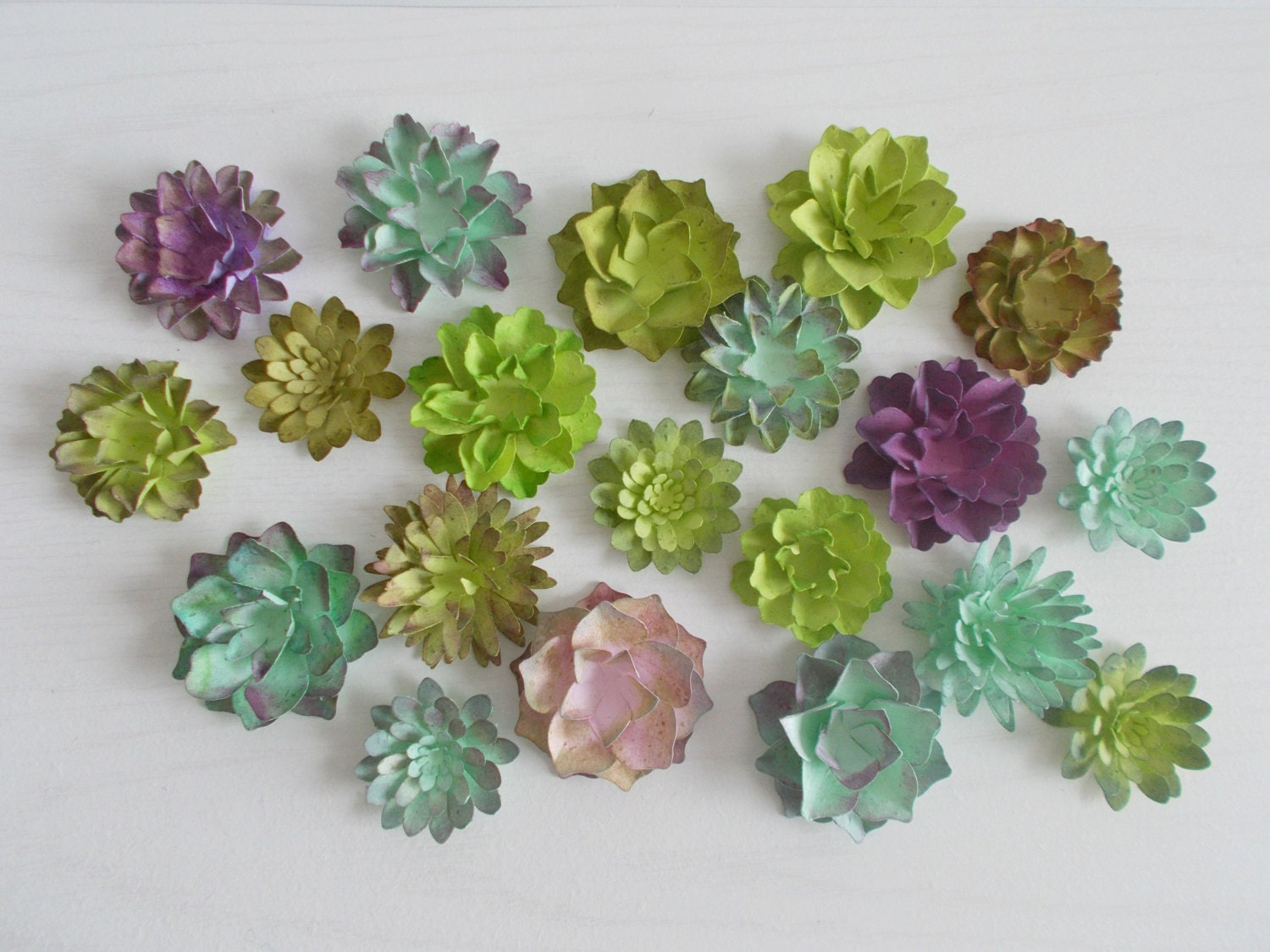 50 succulent favors made from plantable seed paper hand