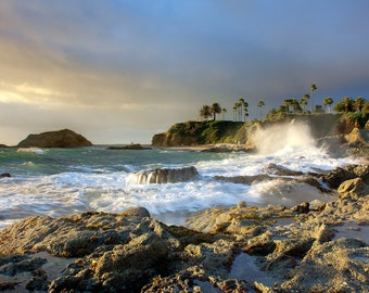 Rocky Coast and Palms (Art Prints available in multiple sizes)