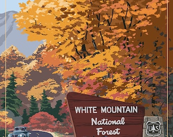 White Mountain National Forest, New Hampshire - Kancamagus Scenic Byway (Art Prints available in multiple sizes)