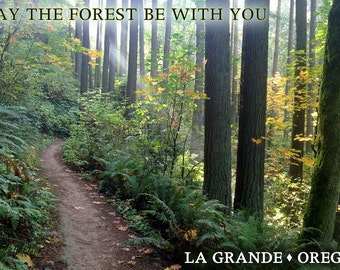 May the Forest Be With You - La Grande, Oregon (Art Prints available in multiple sizes)