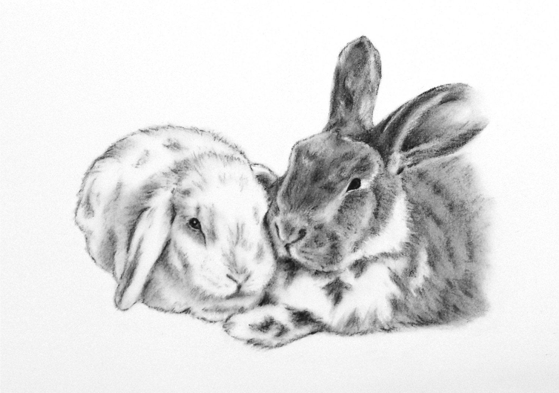 custom pet portrait of your bunny 5x7 rabbit