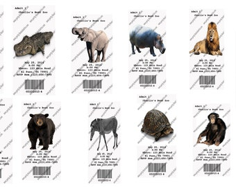 10  Zoo Jungle Safari Ticket Invitations