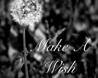 Make a Wish Fine Art Photography, Black & White Dandelion