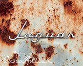 Rusty Jaguar Logo Photograph