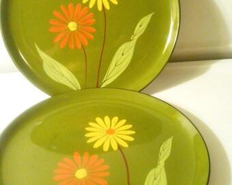 Plastic Enamel Dinner Plates, Hand Painted Plates, Floral Design Plates, 5 Dinner Plates, Durable Plastic Plates, Colorful Plastic Plates