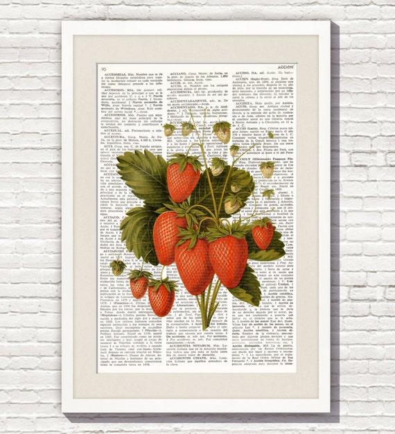 Lamina de diccionario fresas ilustracion vintage l minas - Laminas vintage para cocina ...