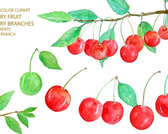 Digital watercolour red cherry and branch clipart printable instant download