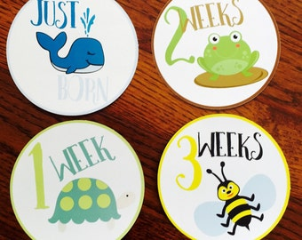 Monthly Baby Stickers, Just Born-12 months