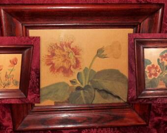 Set of 3 Vintage Stenciled Flower Prints in Thick Walnut Type Frames