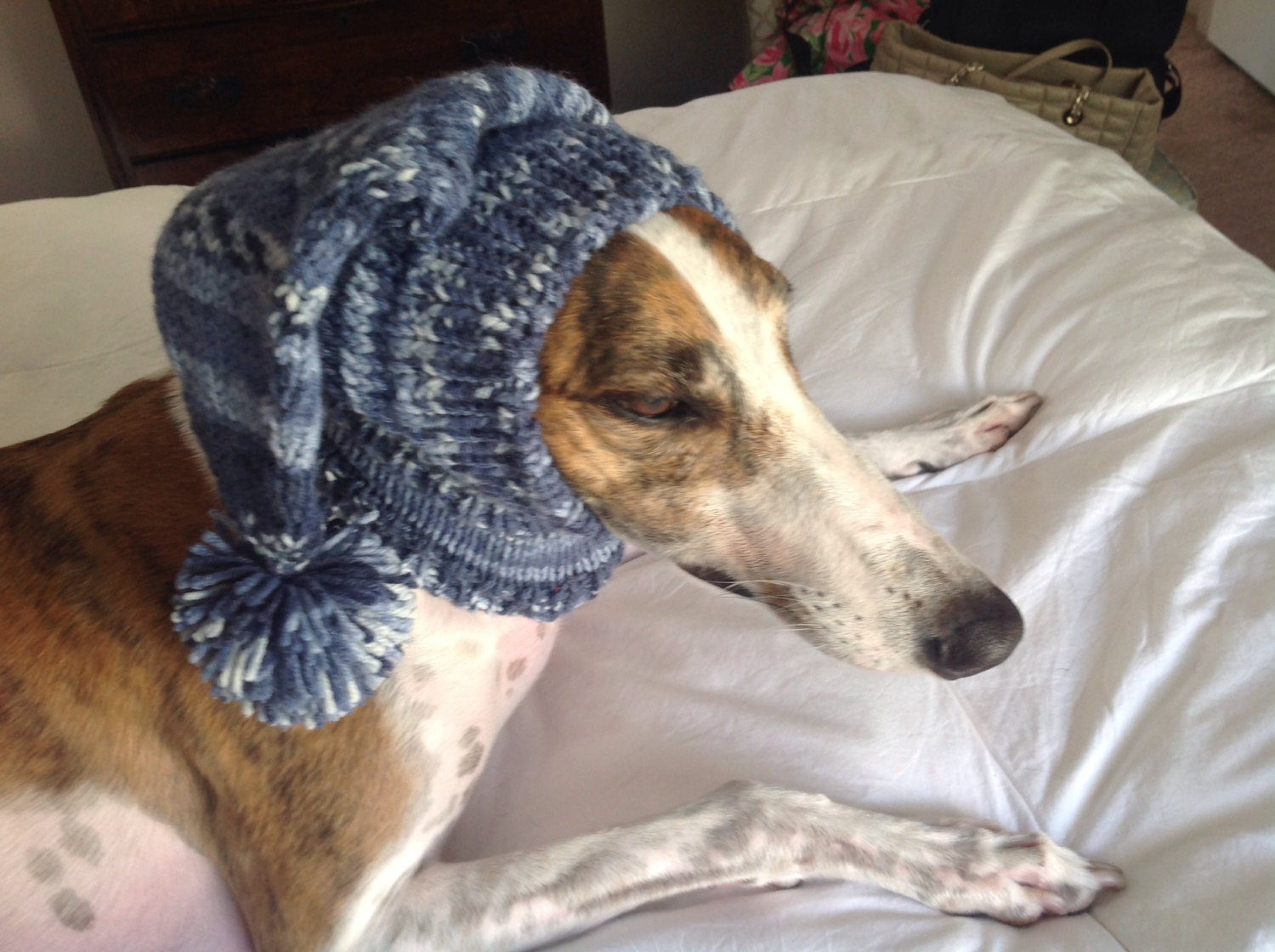 Pointed hat with snood for greyhound or other large sighthound pointed hat with snood for greyhound or other large sighthound fair isle pattern indigo blues bankloansurffo Images