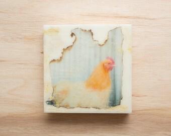 Chicken Art (Hen) 8x8