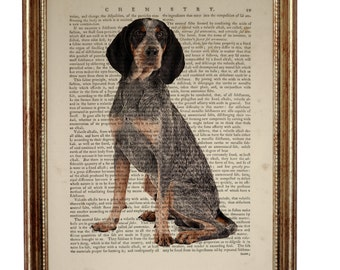 Bluetick Coonhound Dog, beautiful Art Print on Upcycled Dictionary Book page 8'' x 10'' inches