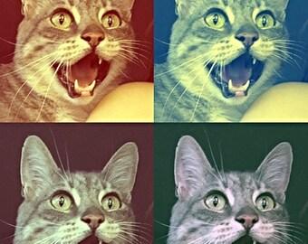 Cat Poster - Pop Art Matte Art Print