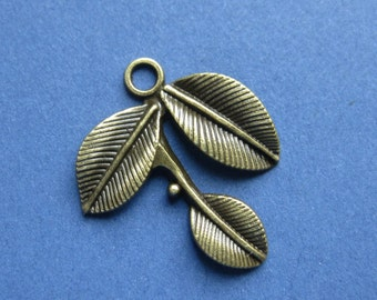 5 Leaf Charms - Leaf Pendants - Leaves Charm - Antique Bronze - 23mm x 23mm -- (R7-10450)