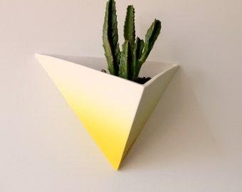 SUSY - Triangular succulent-cactus ceramic pot for wall plant
