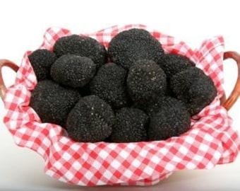 Fresh Truffles