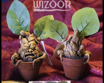 MANDRAKE (mandragole) Harry Potter inspired by!