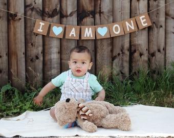 I am one birthday bunting banner, baby boy 1st birthday party decor, cake smashing photo prop