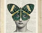 Butterlfy no. 1, Cavalieri print