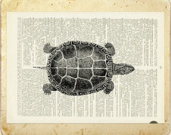 Turtle dictionary page print