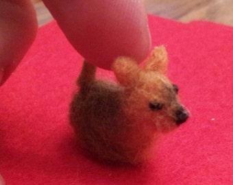 Tiny Silky Terrier - miniature felt dog breeds mini terrier miniature silky terrier