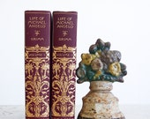 Antique Book Set / The Life of Michael Angelo / 1900's Art Books / Illustrated