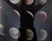 Blood Moon Phase Scarf. FREE SHIPPING USA