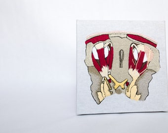 Embroidered Head Cross Section