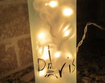 Frosted Paris Lighted  Wine Bottle  French  Eiffel Tower Home Decor Gift