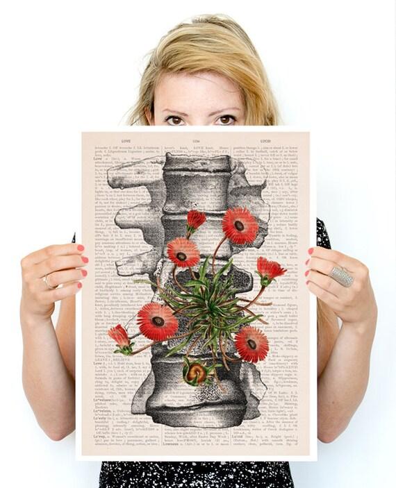 Spring Sale Vertebrae bones, anatomical art, Human anatomy art, r, Wall decor art, Giclee poster, Wall art house PSK097