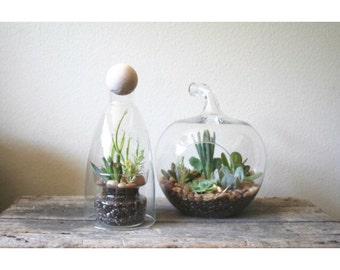 vintage glass apple terrarium