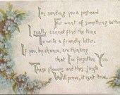 Swags of Forget-Me-Nots decorate this Beautiful Vintage Postcard from 1909 Poem