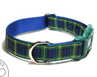 """Gordon Clan Tartan Dog Collar - 1"""" (25mm) Wide - Martingale or Side Release - Choice of style and size // Blue and Green Plaid // Yellow"""