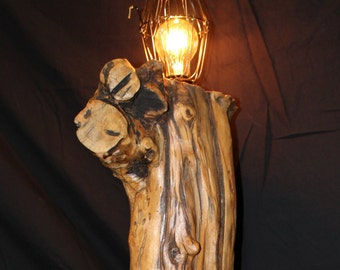 Beautiful Olive Wood Branch Light Fixture mounted on Pistachio Wood