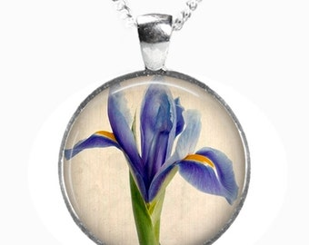 IRIS - Glass Picture Pendant on Chain - Silver Plated (Art Print Photo AA9)