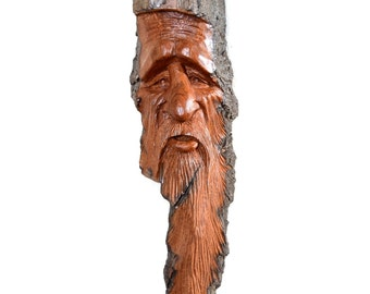 Alaskan Cottonwood Bark Wood Spirit - Roger