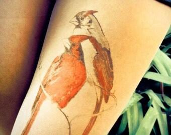 birds, Kardinal,Tattoo tights , HAND PAINTED