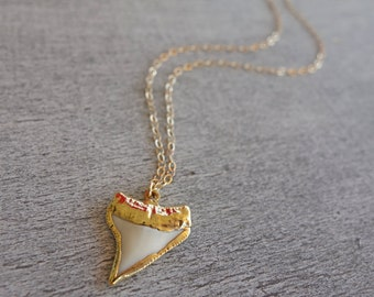 Real Shark Tooth Pendant Necklace Gold