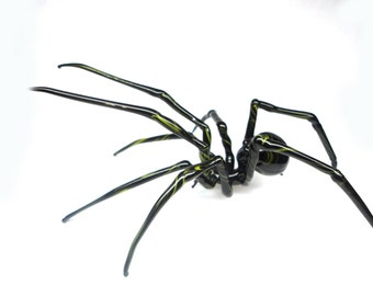 Spider Animals Glass, Art Glass, Blown Glass, Sculpture Made Of Glass