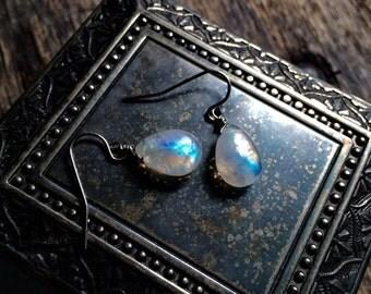 blue fire moonstone earrings with surgical steel earring hooks