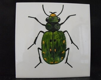 Ceramic Tile Painting, Original. Green Gold and black bug beetle creepie crawley insect plaque Tiger Beetle