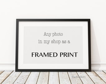 Any Photograph From Shop As a Framed Print