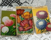 Three Vintage, French Flower Seed Package Labels, Beautiful Floral Designs With French Names #457 ok