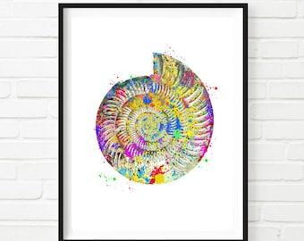 Seashell  Art Print  Watercolor Digital Illustrations Wall Decor Seashell Home Decor INSTANT DOWNLOAD Printable Shell Wall Art
