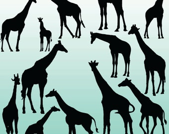 12 Giraffe Silhouette Digital Clipart Images, Clipart Design Elements, Instant Download, Black Silhouette Clip art