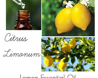 Lemon Essential Oil, Uses for Lemon essential Oil, Where to Buy Lemon Essential Oil