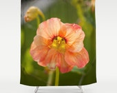 Nasturtium Flower Shower Curtain, Floral Shower Curtain, Photo Shower Curtain, Unique Shower Curtain, Nature Shower Curtain, Floral Bathroom