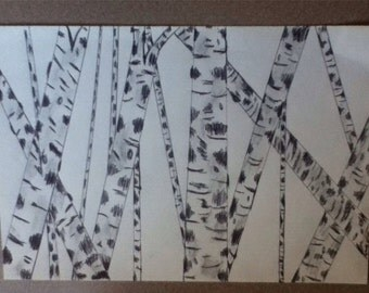 Birch tree sketches, paintings, birch trees, nature, hand drawn, sketches, trees,