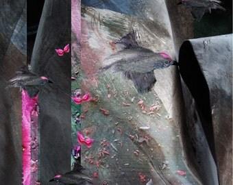 Fly lika a bird, fine art print, digital art, abstract art, paper art